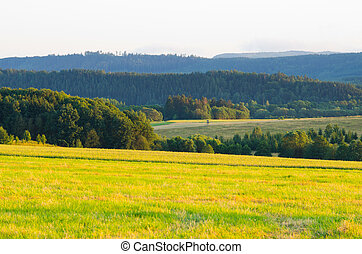 Spring in the hills - Poland