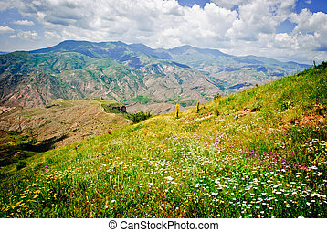 spring in the mountains of Vayots Dzor