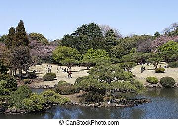 Spring in Tokyo