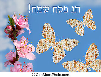 spring jewish holiday of Passover - flowering peach tree...