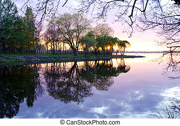 spring lake landscape with tree