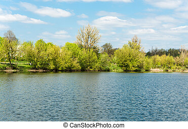 spring landscape at the lake