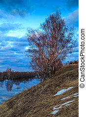Spring landscape, birch tree on a steep bank of the river