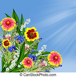 Colorful flowers of the field on a background of blue sky with clouds