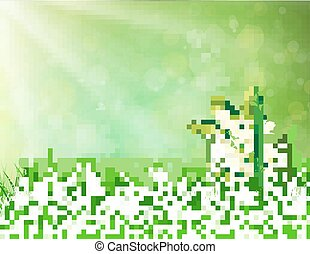 Spring landscape. flowers lily of the valley