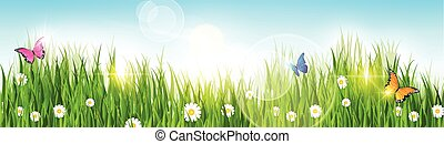 Spring Landscape Green Grass Blue Sky Land Banner Flat Vector Illustration