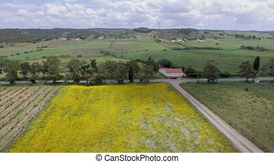 Spring landscape in Portugal - Aerial from a spring...