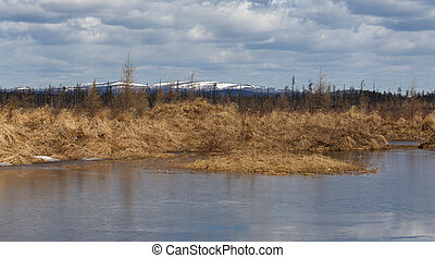 Landscape. Cool spring day in South Yakutia, Russia