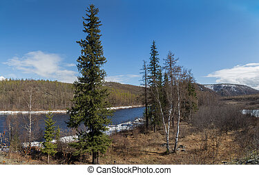 Spring landscape on a clear day in South Yakutia, Russia