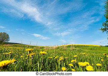 Spring landscape in southern Mecklenburg, Germany,
