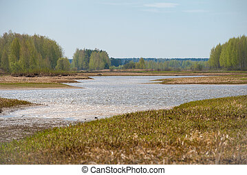 Spring landscape of the river bank