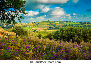 south-west Sicily near Agrigento - spring landscape of the...