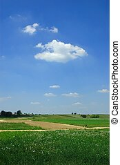 Spring landscape - Meadow