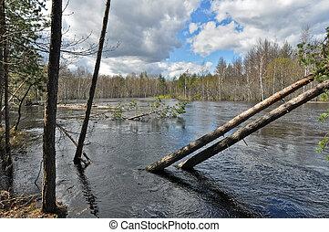 Spring landscape. River in the national Park.