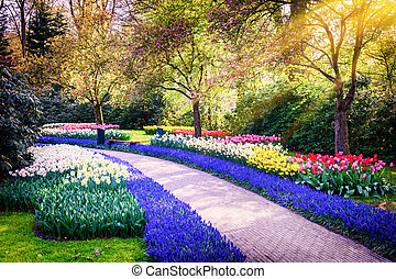 Spring landscape with colorful flowers