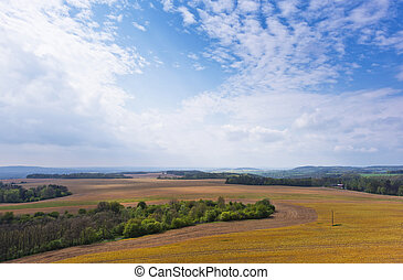 Spring landscape with field, forest and sky