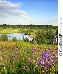 spring landscape with flowers