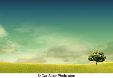 Spring landscape with forrest, tree, green grass and field background