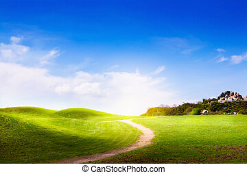 spring landscape with green grass, road and clouds
