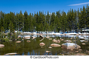 Spring landscape, Yosemite National Park, California, USA