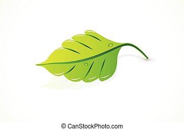 Spring leaf icon logo vector image