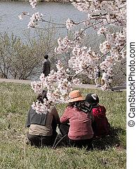 Spring leisure