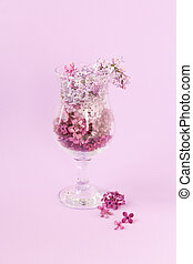 spring lilac flowers arranged from light to dark gradient amber in a glass on a lilac background.