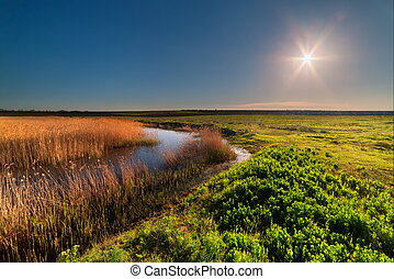 Spring meadow and river against the sun