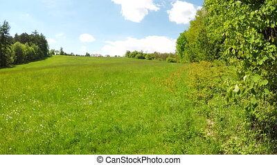 Spring meadow on the hill.