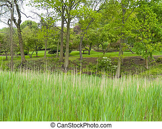 Spring Meadow - An early Spring view of Holmdel Park in...