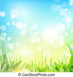 Spring meadow with blue sky - spring meadow with green grass...