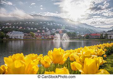 Spring morning in Bergen, Norway