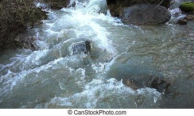 Spring Mountain River