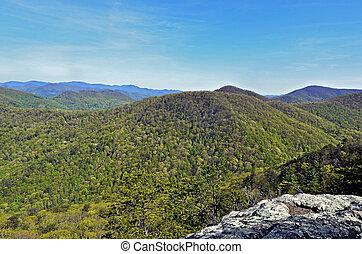 Spring Mountain View
