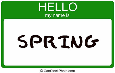 Spring Name Tag - Hello My Name is Spring name tag sticker...