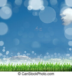 Spring nature background with grass and blue sky in the back