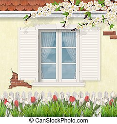 spring old facade wooden window branch tulips