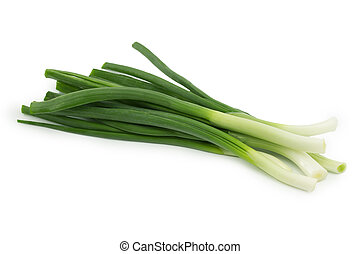 spring onion on a white background