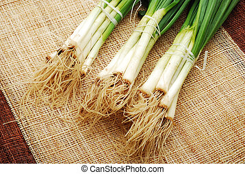 spring onion over rustic mat