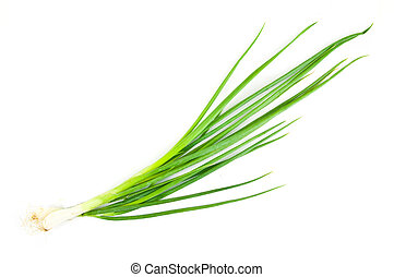 The spring onion isolated on white background