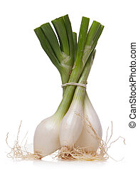 spring onions isolated over white background
