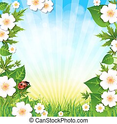 Spring or summer background with grass leaves and flowers and ladybird