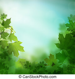 Spring or summer background with leaves