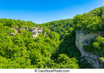 spring or summer forest landscape in the Caucasus mountains on a Sunny day