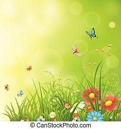 Spring or summer green background - Spring or summer...