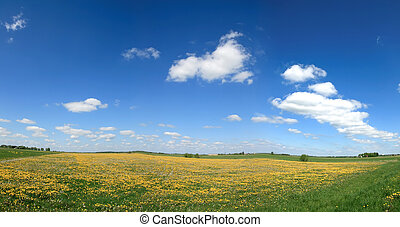 Spring panorama 2