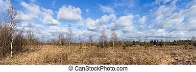 spring panorama