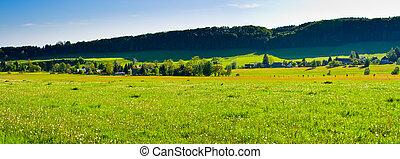 Spring panorama with village