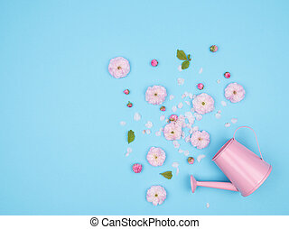 Spring pink flowers on a blue background. The almond blossoms.