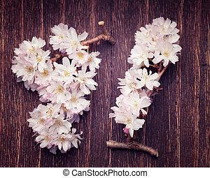 Spring pink flowers on a dark vintage wood background